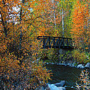 Fall River Print by Dana Kern