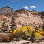 Fall Season At Zion National Park Art Print