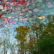 Fall Sky Art Print