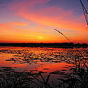 Fall Sunset In The Mead Wildlife Area Art Print