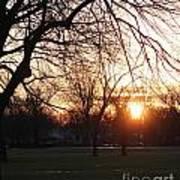 Fall Sunset Tree Silhouettes Art Print
