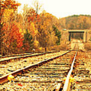 Fall Tracks Art Print by Stephanie Grooms