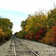Fall Tracks Art Print