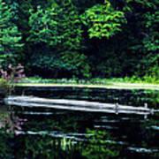 Fallen Log In A Lake Art Print by Bill Cannon