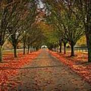 Fall's Driveway Art Print