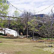 Falls Park On The Reedy Greenville Art Print