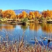 Fall's Reflection On The Rio Grande Art Print