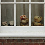 Family Of Teddy Bears On The Window. Print by Kiril Stanchev
