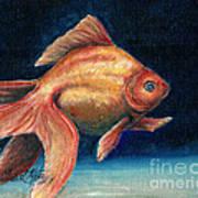 Fancy Goldfish Art Print by Linda L Martin