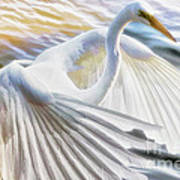 Fancy Wing Dancer  Art Print