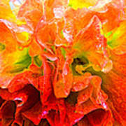 Fantasy Flower 7 Art Print