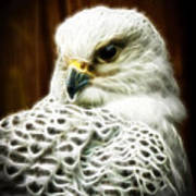 Fantasy White Falcon Art Print