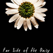 Far Side Of The Daisy Fractal Version Art Print