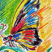 Farfalla Art Print
