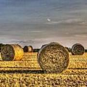 Farm Bales Art Print