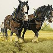 Farm Horses Art Print