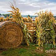 Farm Life1 Art Print