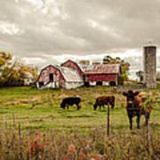 Farm Living Art Print