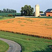 Farm Nr Mountville Lancaster Co Pa Usa Art Print