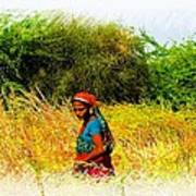 Farmers Fields Harvest India Rajasthan 2a Art Print