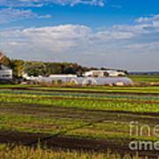 Farmer's Market And Green Fields Art Print