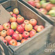 Farmers' Market Apples Art Print