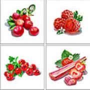 Farmers Market Gifts Red Vitamins Art Print