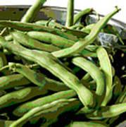 Farmers Market Green Beans Art Print by Ann Powell