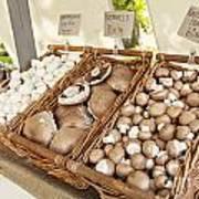 Farmers Market Mushrooms Art Print