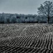 Farmfield Furrows Art Print