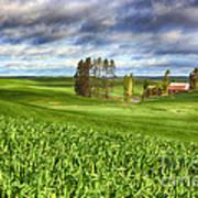 Farmstead Art Print