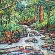 Fast Water Wildwood Park Art Print by Kendall Kessler