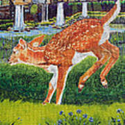 Fawn In The Holle Art Print