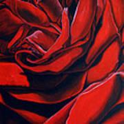 February Rose Art Print