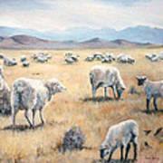 Feed My Sheep Art Print