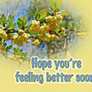 Feel Better Soon Greeting Card - Barberry Blossoms Art Print