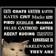 Felines   - Poster  Art Print