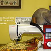 Felines Rule Art Print