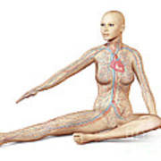 Female Body Sitting In Dynamic Posture Art Print