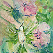 Female Hummingbid Art Print
