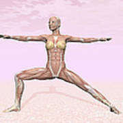 Female Musculature Performing Warrior Art Print