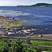 Fence Along Rocky Harbour-nl Art Print