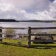 Fence At Kielder Water Art Print