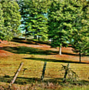 Fence - Featured In Comfortable Art Group Art Print