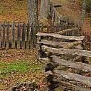 Fence In Autumn Art Print