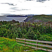 Fence In Fields At Long Point In Twillingate-nl Art Print