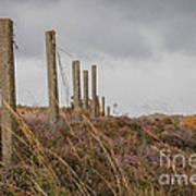 Fence In The Storm In Norway Art Print