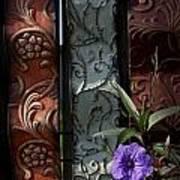 Fence Petunia Art Print