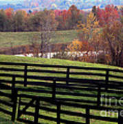 Fences In The Fall Art Print