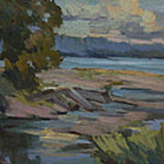 Fern Cove Vashon Island Art Print